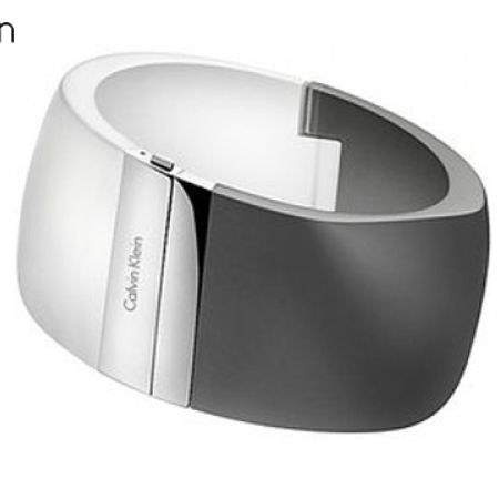 39% Off Calvin Klein Visionary Stainless Steel Bracelet (Only $100 instead of $165)