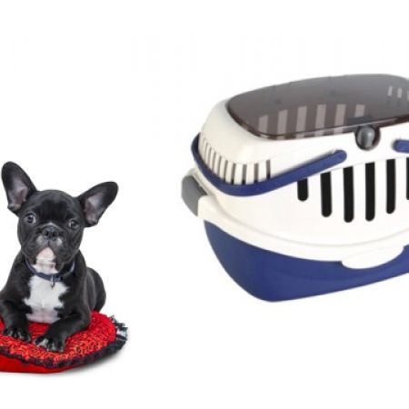 40% Off Portable Soft Blue Sided Pet Carrier (Only $26 instead of $43)