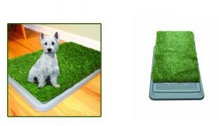 Potty Patch Economical Dog Litter Box