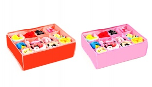 12-Compartment Foldable Organizer With Lid - Pink