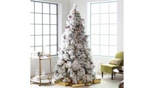 Flocked Christmas Tree With Snow - 150 cm