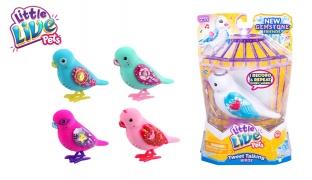 Little Live Pets Dazzle Bird Single Pack - Princess Gemma