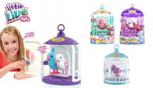 Little Live Pets Single Bird With Cage - Ruby Belle
