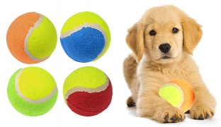 "Greenbrier Kennel Club Tennis Ball Dog Toys 3.5"" - Orange"