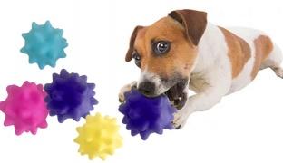 Bachako Spiky Squishy Ball Pet Toy - Blue