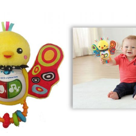 VTech Baby Activity Rattle Bird Birdie Learning Play Toys Music Educational New