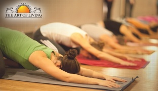 1-Time Drop-In Yoga Class
