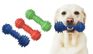 Spikes Bone Toy Dumble For Dog 14 cm - Blue