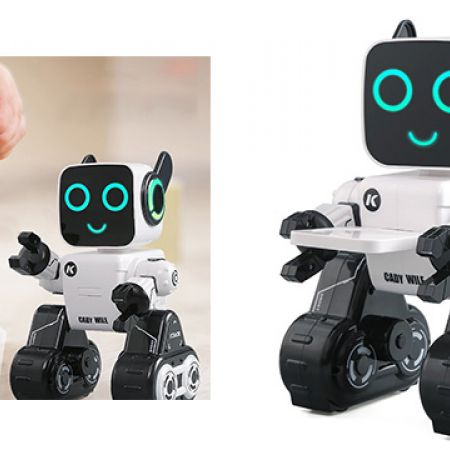 Cady Wile 2.4G Intelligent Remote Control Robot Advisor