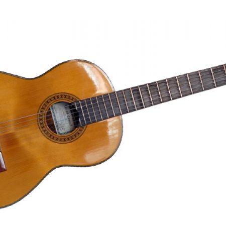 Professional Classic Body Guitar