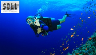 3-Hours Discovery Scuba Diving