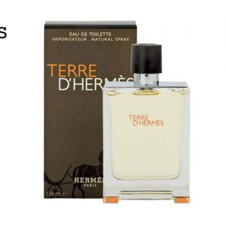 Hermes Terre D'hermes Eau De Toilette For Men - 100 ml