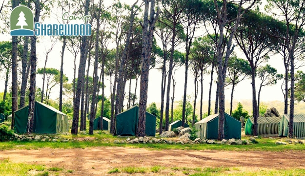 1-Night Camping Stay