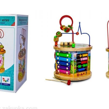 10 in 1 Wooden Educational Toy Sorter